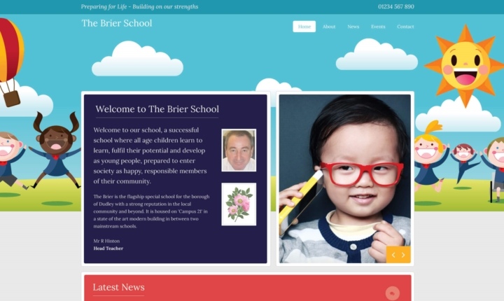 Primary School Website Services